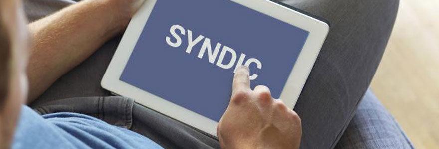 Syndic